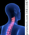 cervical Spine Pain. Blue Human Anatomy Body 3D 34811087