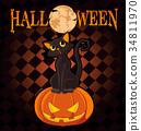 Halloween Cat on Pumpkin 34811970