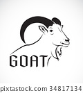Vector of a goat design on a white background. 34817134