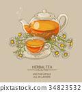 chamomile tea illustration 34823532