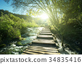 way in forest, Plitvice lakes, Croatia 34835416