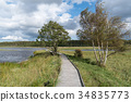 Wooden footbridge in a wetland 34835773
