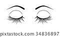 eye, vector, eyebrow 34836897