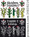 Christmas cactus, vector set 34839214