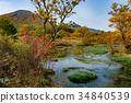 ฤดูใบไม้ร่วง,ต้นเมเปิล,น้ำ 34840539