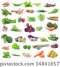 vegetables 34841657