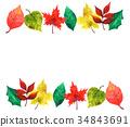 autumn, autumnal, leaf 34843691