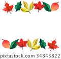 autumn, autumnal, leaf 34843822