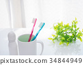 tooth brush, tooth-brush, toothbrush 34844949