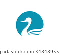 Goose Logo Template 34848955