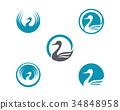 Goose Logo Template 34848958