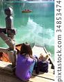 lake, boat, pier 34853474