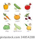 健康 图标 有机 34854288