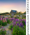 church, flower, blossom 34854433