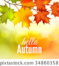 autumn vector maple 34860358