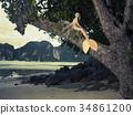Beautiful mermaid sitting on mighty tree 34861200