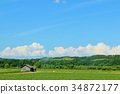 홋카이도 여름 푸른 하늘과 대지 34872177