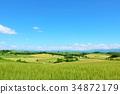 北海道夏天藍天和美瑛山 34872179
