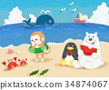 Sea play of the animals 34874067
