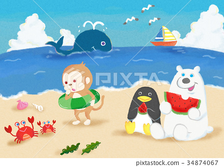 海上玩的動物 34874067