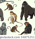 Different types of monkeys pattern 34875251