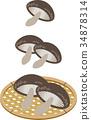 主编滤网 椎茸 蘑菇 34878314
