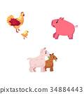 chicken cartoon vector 34884443