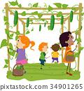 小孩 孩子 黃瓜 34901265