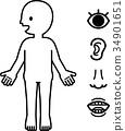 ภาพประกอบของร่างกายมนุษย์และใบหน้าที่เรียบง่าย 34901651