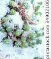 冬天 冬 下雪 34902106