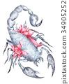Scorpio Sign Watercolor 34905252