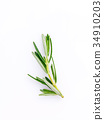 Branch of fresh rosemary  isolated on white . 34910203
