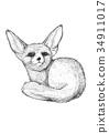 狐狸 草圖 素描 34911017