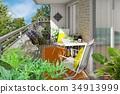 Veranda Garden 1 34913999