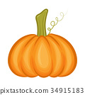 Pumpkin isolated on white background 34915183
