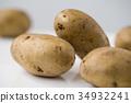 Potato isolated on white background close up 34932241