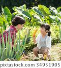 父母身份 父母和小孩 农业 34951905