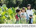 父母身份 父母和小孩 农业体验 34952994