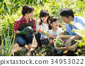 Family agriculture vegetables field children 34953022