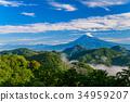 พืชสีเขียว,ภูเขาฟูจิ,ภูเขาไฟฟูจิ 34959207