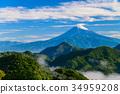 พืชสีเขียว,ภูเขาฟูจิ,ภูเขาไฟฟูจิ 34959208