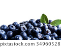Close up of Juicy and fresh blueberries 34960528