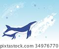 鲸鱼 矢量 座头鲸 34976770