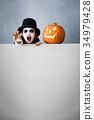 Halloween Pumpkin Autumn Holiday Concept 34979428