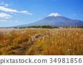 ภูเขาไฟฟูจิ 34981856