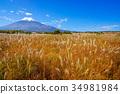 ภูเขาไฟฟูจิ 34981984