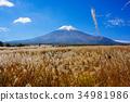 ภูเขาไฟฟูจิ 34981986