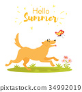 dog with butterfly 34992019