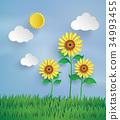 sun flower 34993455