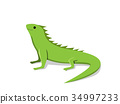 Friendly green iguana in flat style, vector 34997233